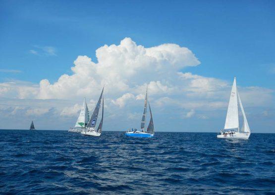 SIA Fleet