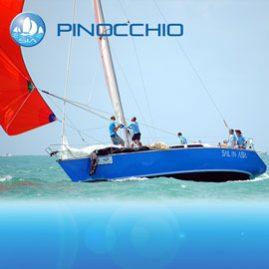 Pinocchio – 11m Racing Yacht